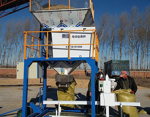 东昌玉米大豆定量包装机4
